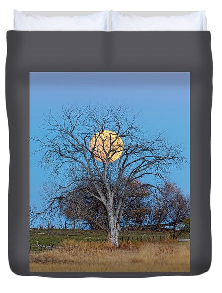 Duvet Cover featuring the photograph Beaver Moon Portrait by James BO Insogna
