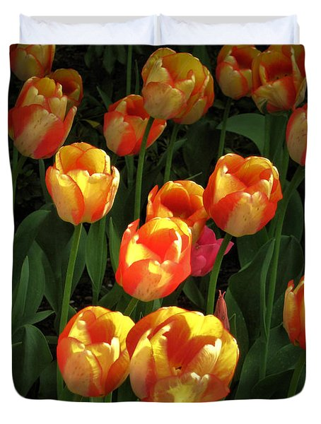 Bed Of Tulips Duvet Cover