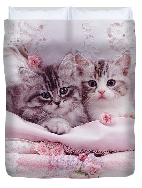 Bedtime Kitties Duvet Cover