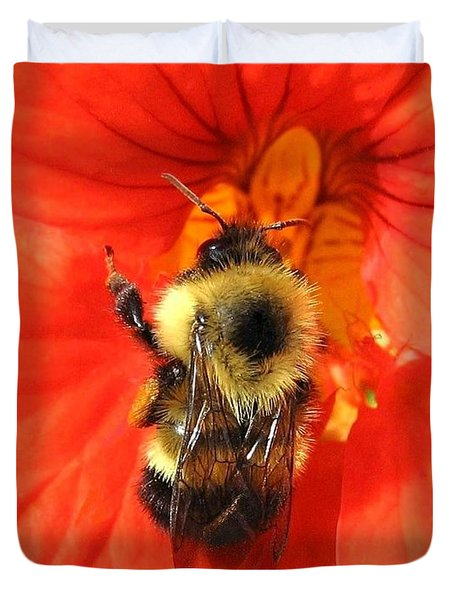 Bee And Nasturtium Duvet Cover by Will Borden