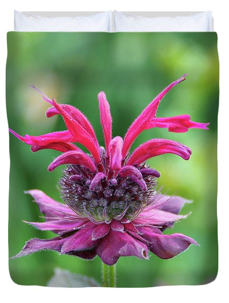 Bee Balm Duvet Cover