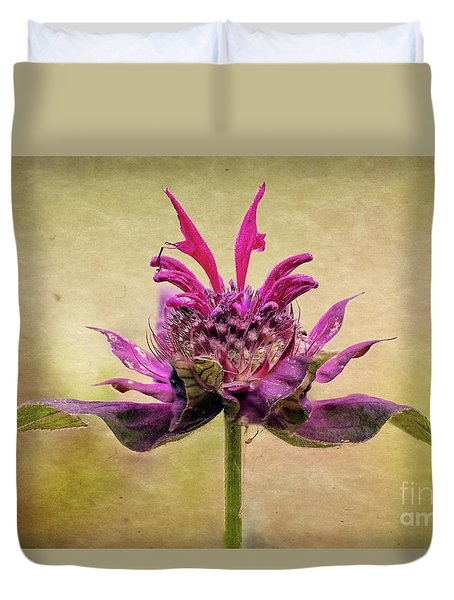 Bee Balm With A Vintage Touch Duvet Cover