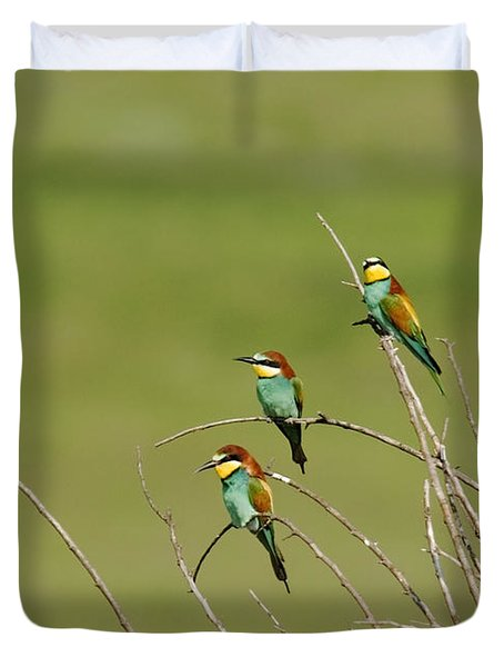 Bee Eaters  Duvet Cover