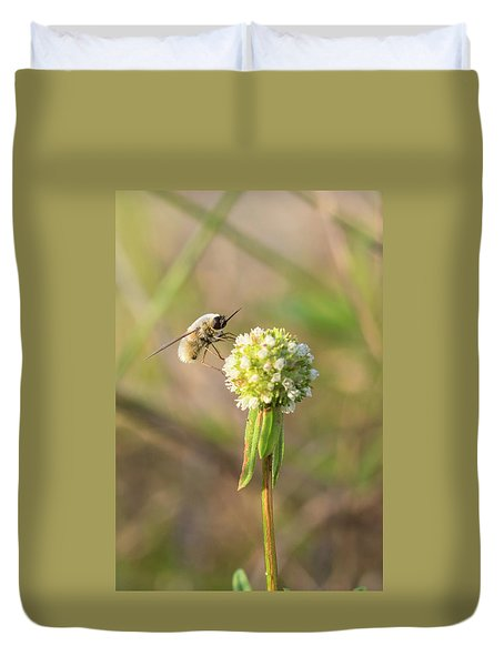 Bee Fly On A Wildflower Duvet Cover