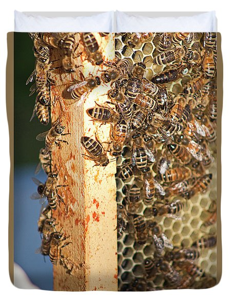 Bee Hive 4 Duvet Cover