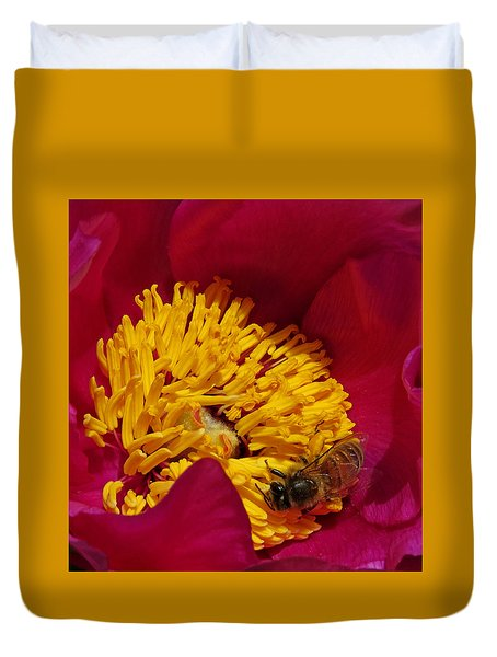 Bee On A Burgundy And Yellow Flower2 Duvet Cover