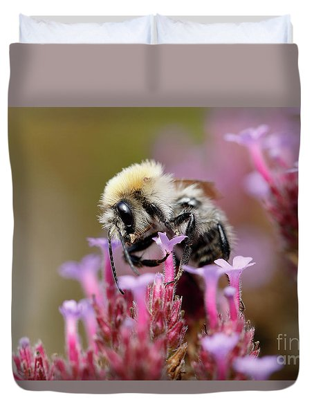Duvet Cover featuring the photograph Bee On A Verbena Bonariensis by Nick Biemans