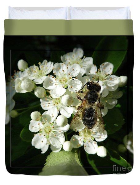 Bee On White Flowers 2 Duvet Cover by Jean Bernard Roussilhe