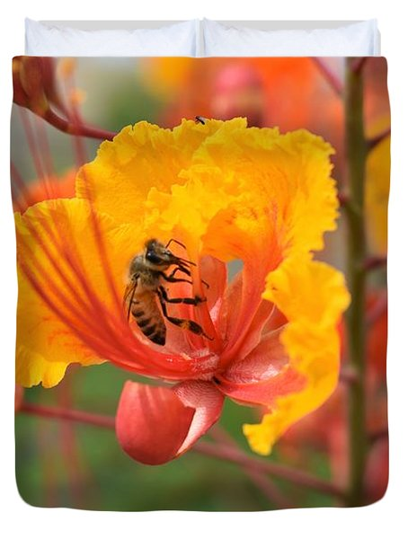 Bee Pollinating Bird Of Paradise Duvet Cover