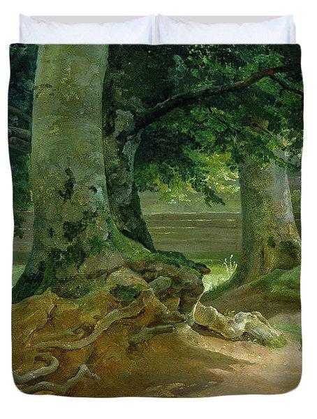 Beech Trees In Frederiksdal Near Copenhagen Duvet Cover by Christian Ernst Bernhard Morgenstern