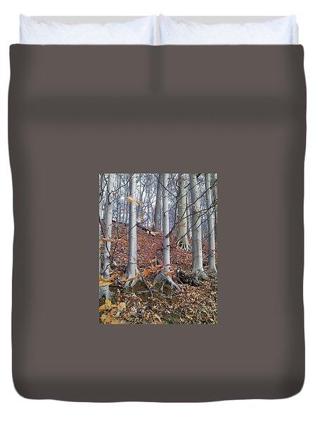 Beech Trees Duvet Cover