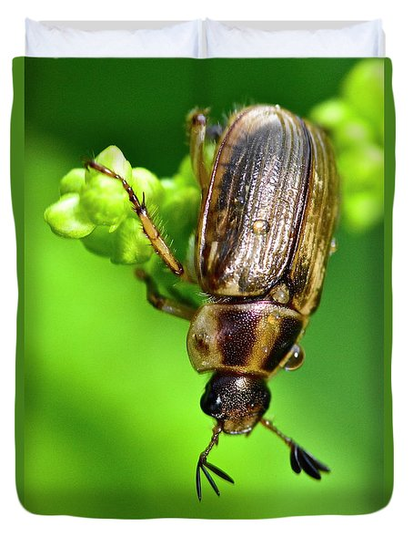 Beetle Duvet Cover