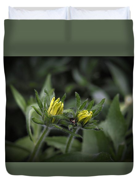 Beetle On Flower Duvet Cover