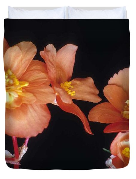 Begonia Buddies Duvet Cover by Laurie Paci