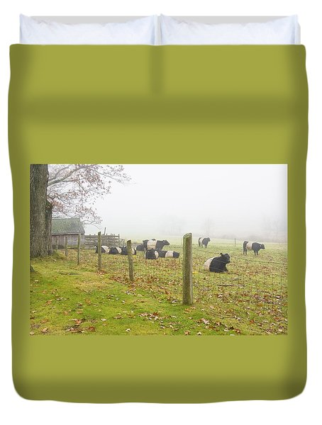 Belted Galloway Cows Farm Rockport Maine Photograph Duvet Cover