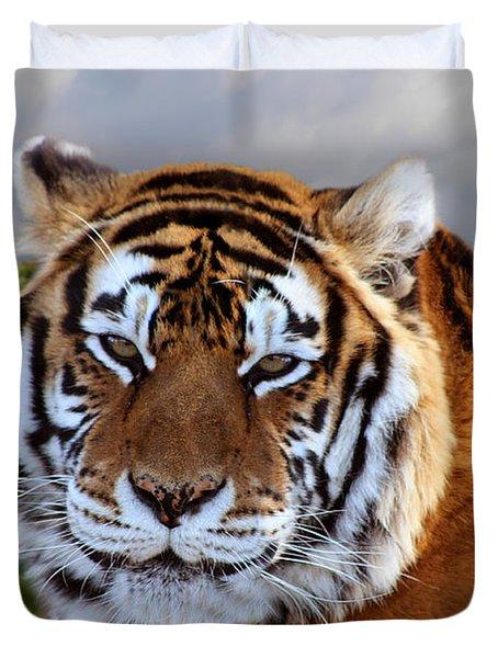 Bengal Tiger Portrait Duvet Cover