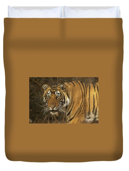 Bengale Tiger Duvet Cover