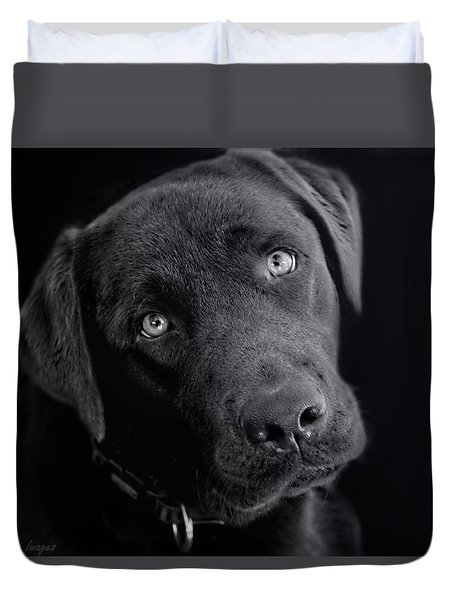 Benji In Black And White Duvet Cover by Wallaroo Images
