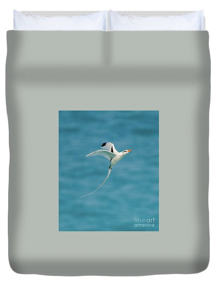 Bermuda Longtail S Curve Duvet Cover by Jeff at JSJ Photography