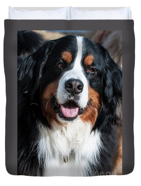 Duvet Cover featuring the photograph Bernese Mountain Dog Portrait  by Gary Whitton