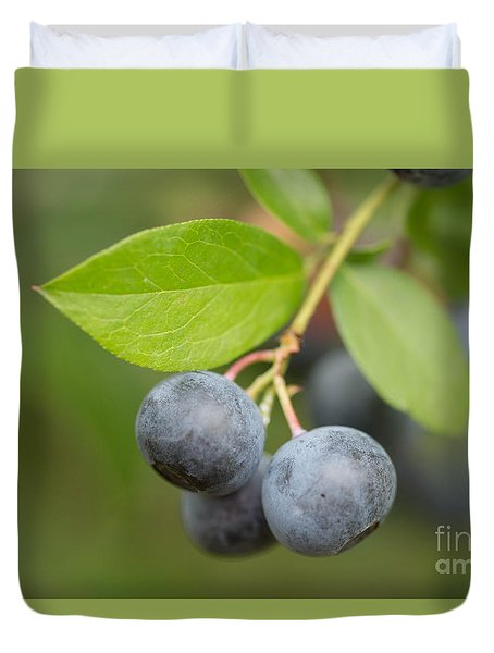 Berrydelicious Duvet Cover by Kim Henderson