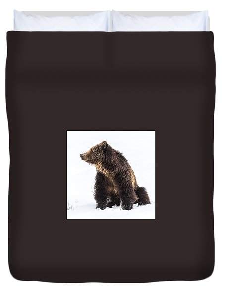 Duvet Cover featuring the photograph Beryl Springs Grizzly Sow In Snow by Yeates Photography