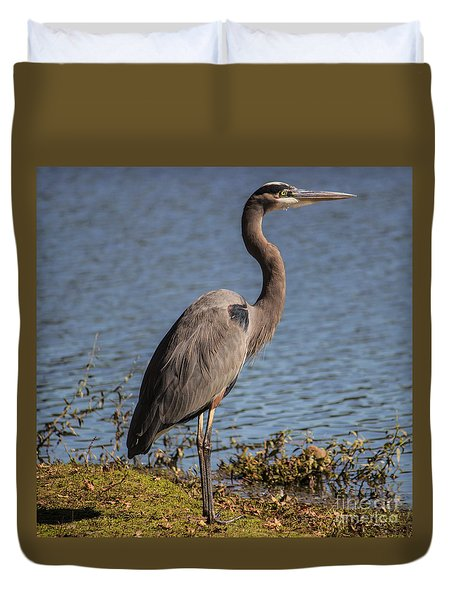 Big Bird Duvet Cover