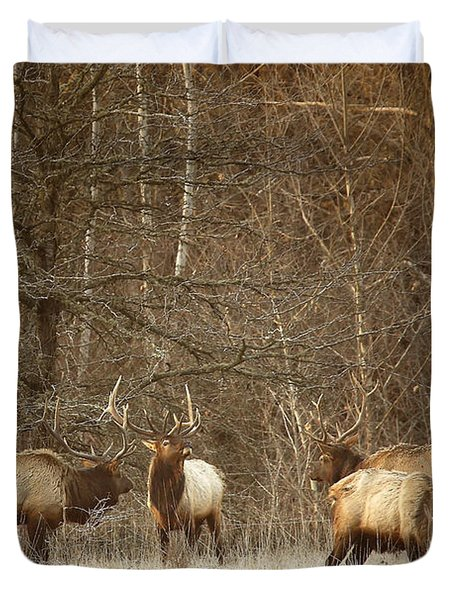 Duvet Cover featuring the photograph Big Bull Meeting In Boxley Valley by Michael Dougherty