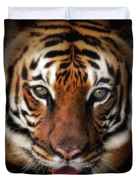 Big Cat Stare Down Duvet Cover
