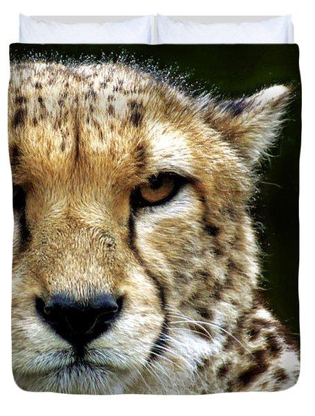 Big Cats 51 Duvet Cover