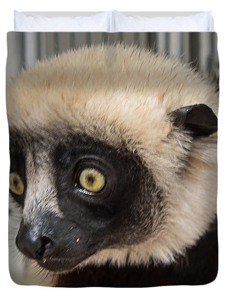A Very Curious Sifaka Duvet Cover