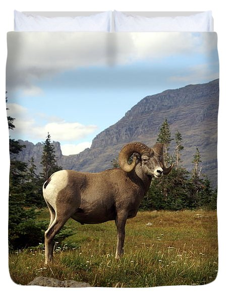 Big Horn 4   Duvet Cover by Marty Koch