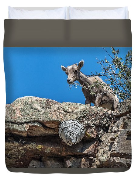 Duvet Cover featuring the photograph Big Horn Lamb Overlooking Hornets Nest by Stephen  Johnson