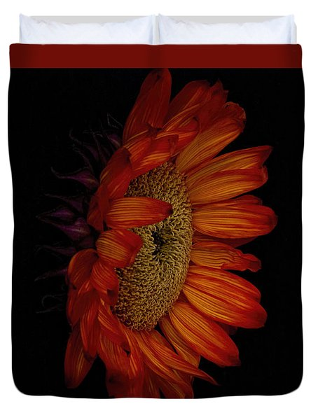 Big Red Duvet Cover by Dennis Reagan