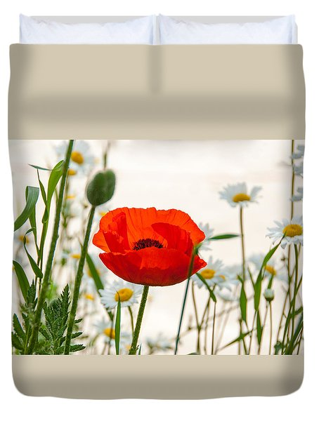 Big Red Poppy Duvet Cover by Carolyn Dalessandro