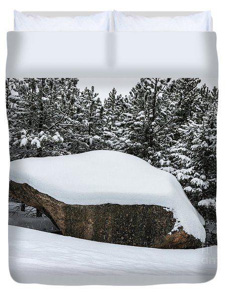 Big Rock - 0623 Duvet Cover