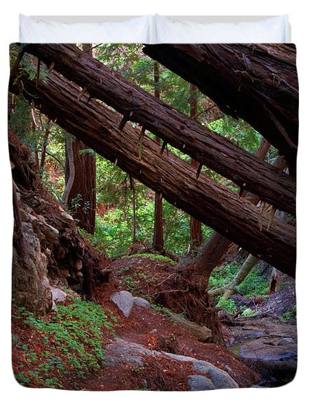 Big Sur Redwood Canyon Duvet Cover