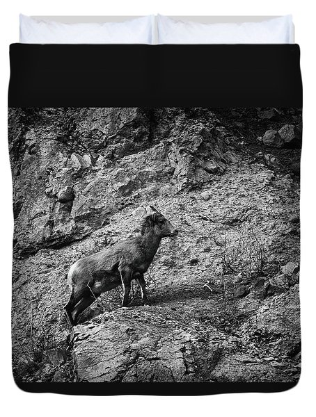 Bighorn Sheep Ewe On Wolf Creek Pass Duvet Cover