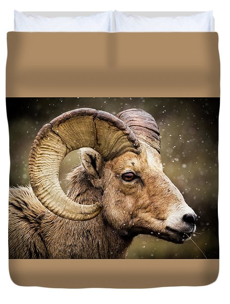 Bighorn Sheep In Winter Duvet Cover