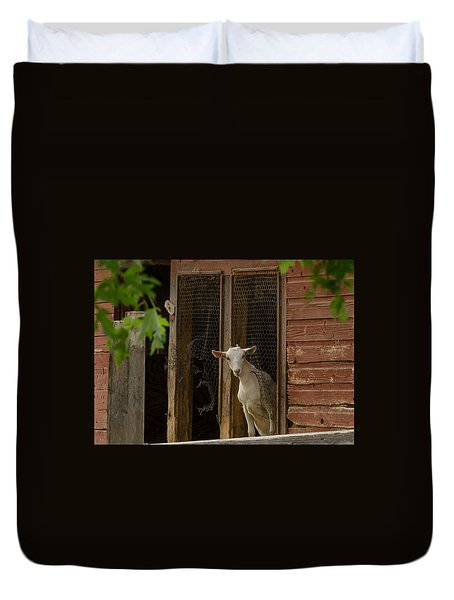 Duvet Cover featuring the photograph Billy Goat by Dan Traun