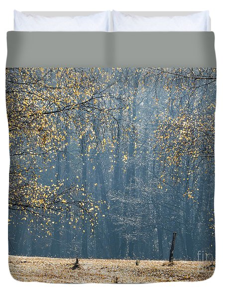 Birch Forest To The Morning Sun Duvet Cover