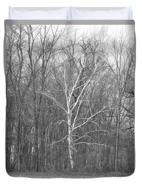 Birch In Bw Duvet Cover