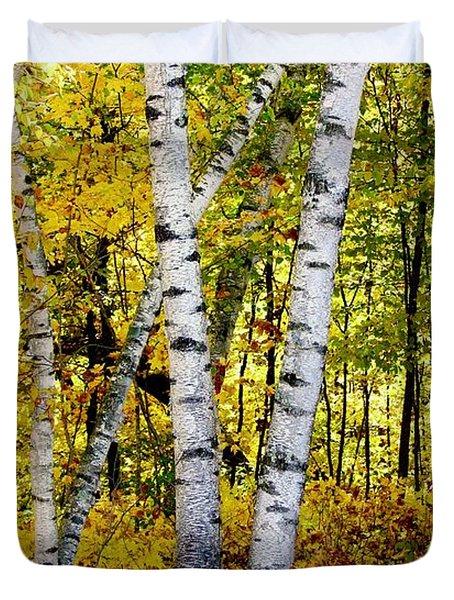 Birch In Gold Duvet Cover