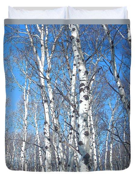 Birch Sky Duvet Cover