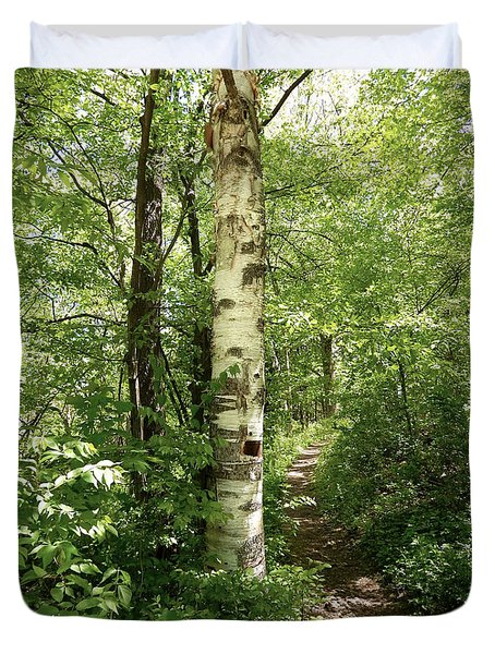Birch Tree Hiking Trail Duvet Cover