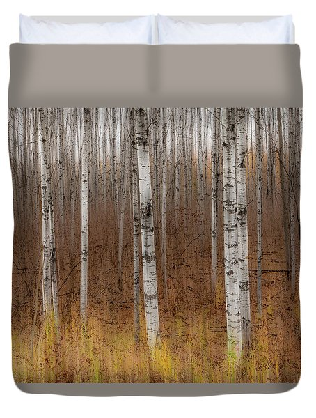 Birch Trees Abstract #2 Duvet Cover