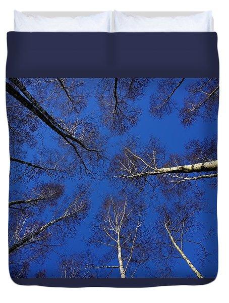 Birch Trees In Winter Duvet Cover