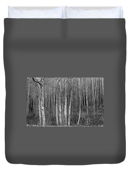Birch Tress Duvet Cover