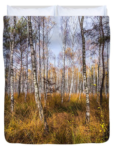 Birches And Grass Duvet Cover