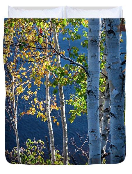 Birches On Lake Shore Duvet Cover